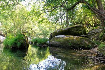 Quinta do Mocho, Rio Vez, Souto