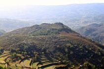 Cabreiro - Tabarca